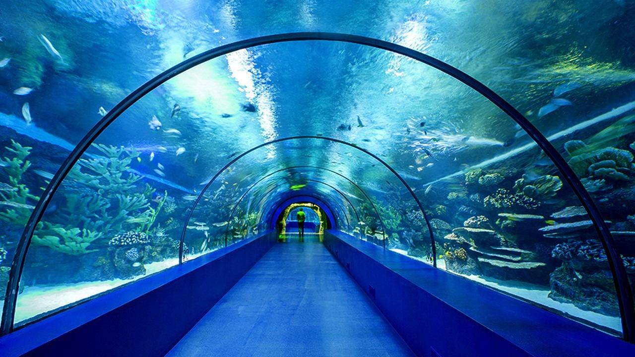 المتحف المائي انطاليا الأكواريوم Antalya Aquarium